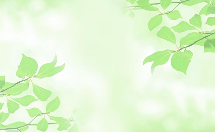 仙台の外科「みのりファミリークリニック」に初めて受診する方へのご案内2